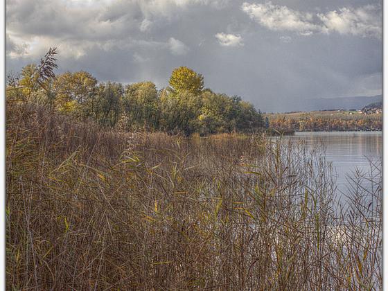 Der Winter kommt .. (Super-Takumar 3.5 / 35mm @f 8.0 (Canon D550)