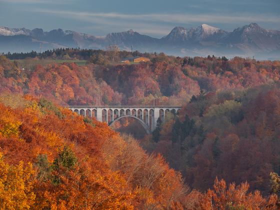 Herbst am Röschtigraben